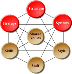 factors affecting organizational structure pdf